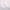 Белый воротничок с кружевом